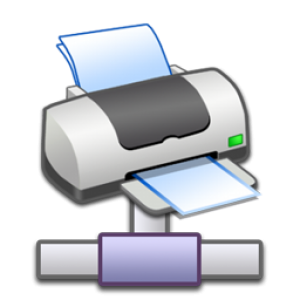 Add a Printer via Standard TCP/IP Port-Print Server